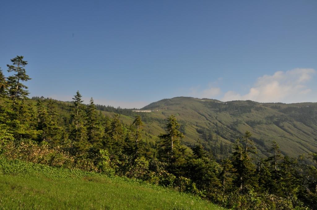 駒ノ小屋から会津駒ヶ岳への風景